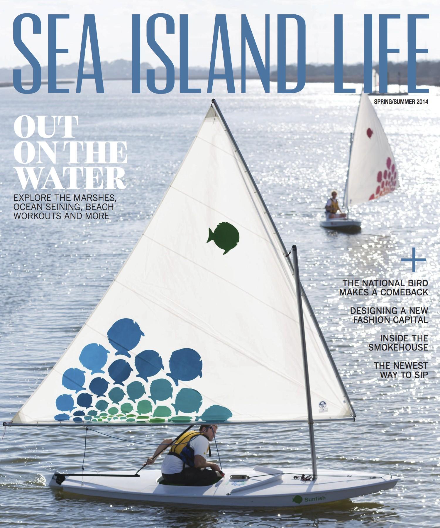 SeaIsland_DamonMBanks_Cover