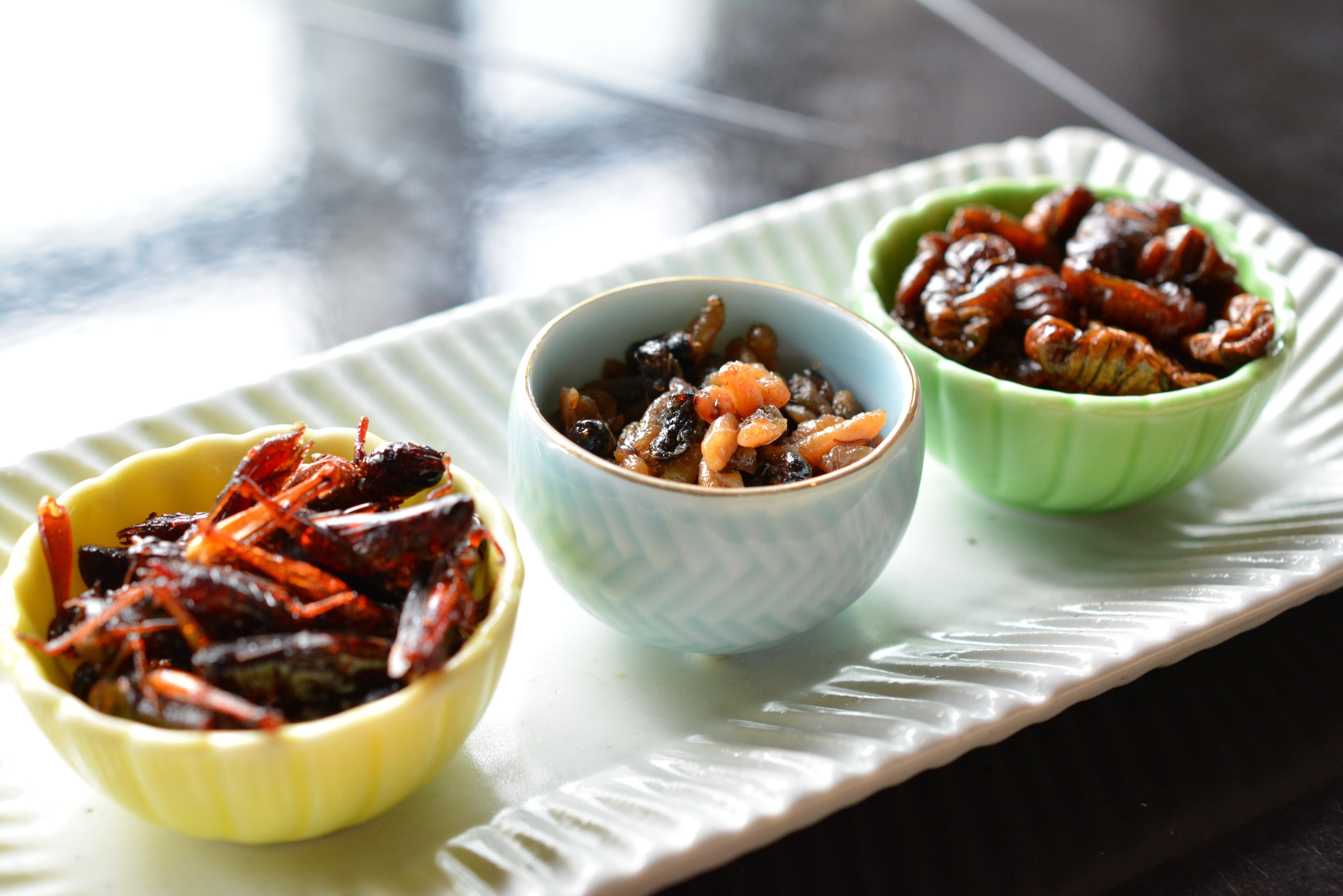 Insect-Snacks_Mandarin-Oriental-Tokyo_JustLuxe_Damon-M-Banks